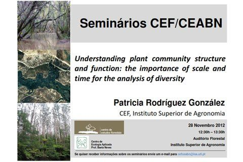 Patricia Gonzalez Seminar