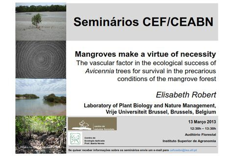 Mangroves make a virtue of necessity